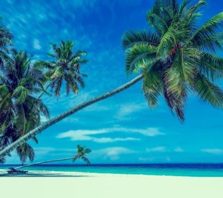 Rundrejser i Vietnam bringer dig også til stranden